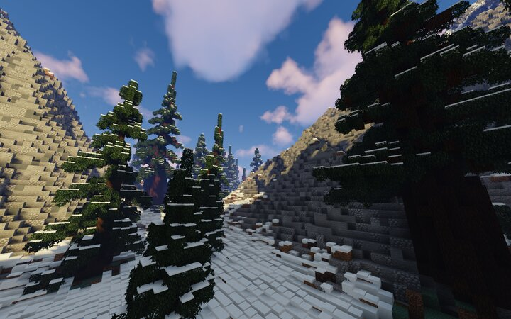 Forest Valley View With Shaders