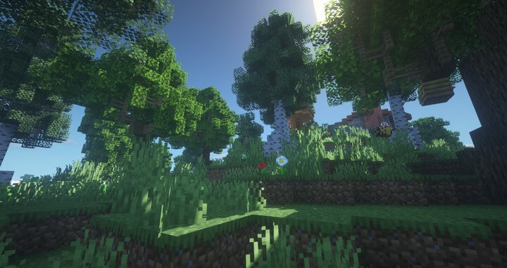The forest surrounding, doesnt make sense why its called a plains home though, if its surrounded by a forest.