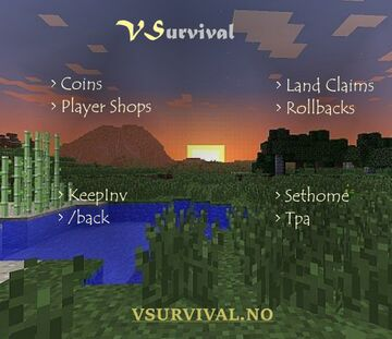 ⛏️ [1.16] VSurvival - Semi-Vanilla - PvE - Community Minecraft Server