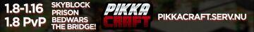 PikkaCraft - 1.8+ Minecraft Server