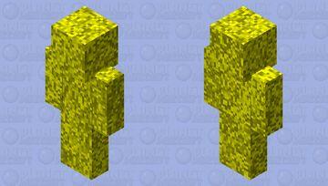 Richy Minecraft Skin