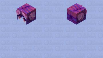 cotton candy space buns base Minecraft Skin