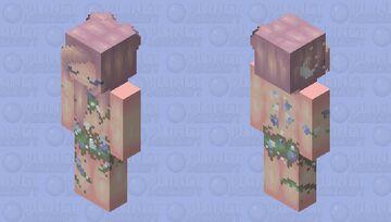 .*+𝓜𝔂 𝓢𝓬𝓪𝓻𝓼, 𝓜𝔂 𝓢𝓽𝓸𝓻𝔂+*. Minecraft Skin