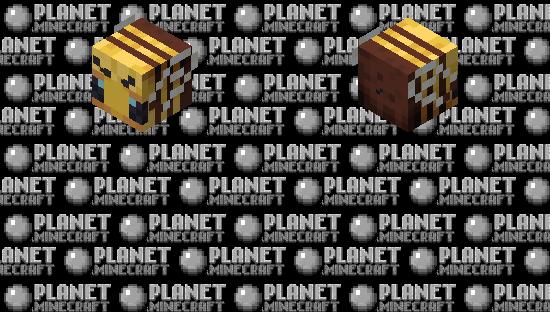 Bee skin Minecraft Skin