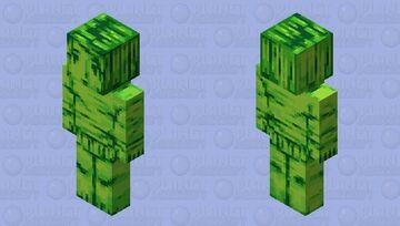 Retro Minecraft Skin