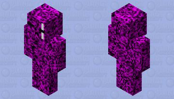Reserved for king Enderman the 34th Minecraft Skin