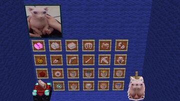 Bingus Essentials Minecraft Texture Pack