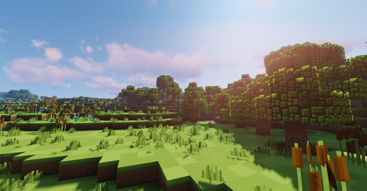 The Border of a Plains Biome