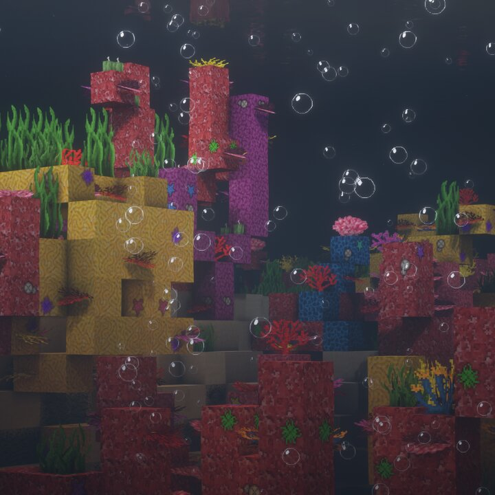 Coral and bubbles