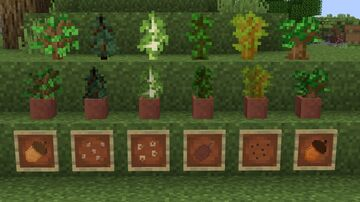 Saplings to Seeds Minecraft Texture Pack
