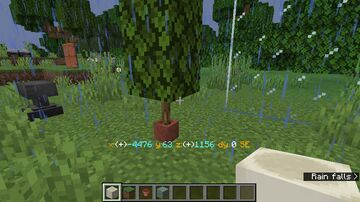 Potted Oak Log(Bamboo) Minecraft Texture Pack