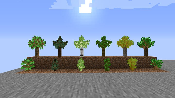 saplings of Stage 1