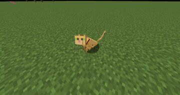 maui in minecraft for grian Minecraft Texture Pack