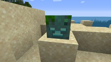 Drowned Head Minecraft Texture Pack