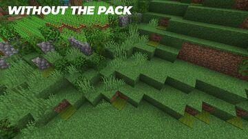 Biome Carpet Color Minecraft Texture Pack