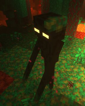 Tom's Biome Mobs 1.16 (Nether Update) Minecraft Texture Pack