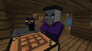 Pillager Witches Minecraft Texture Pack