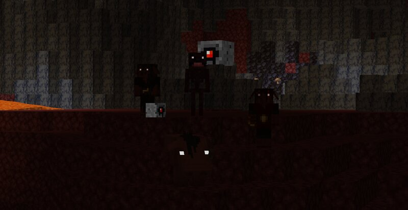The nether has a strange and dark environment.
