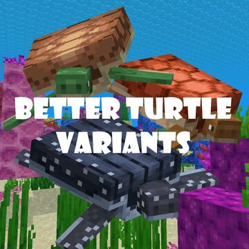 Better Turtle Variants Minecraft Texture Pack