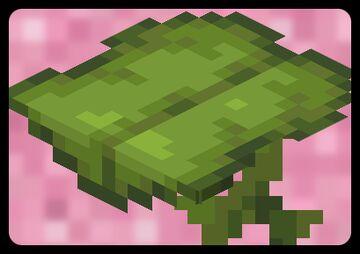 Big_Dripleaf Fix Minecraft Texture Pack