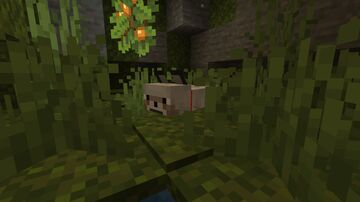 Watery Wolves and Foxlotls (Axolotl Mob Pack) Minecraft Texture Pack