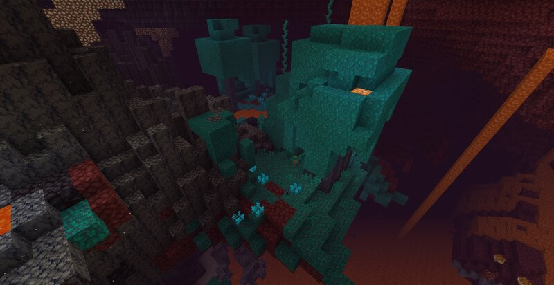 Mojang really out-did themselves this update... And I really out-did them... Jk but notice the nether sprouts and warped fungi.