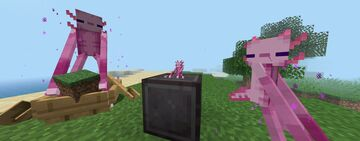 Axoman and a toy plushie 1.8.9 - 1.17.x Minecraft Texture Pack