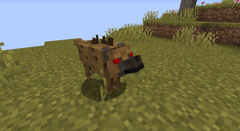 Angry hyena.