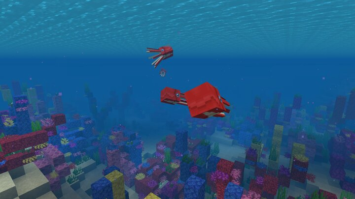 These squids live in herds. Fins help all squid great swimming