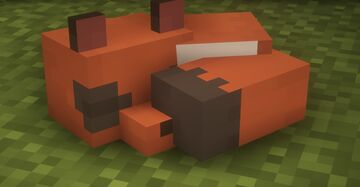 Nickit over fox! Minecraft Texture Pack