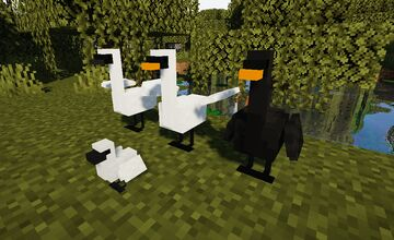 Swans Minecraft Texture Pack