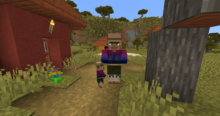 Villagers have diffrent outfits per biome