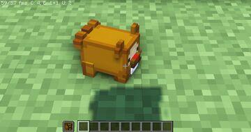 Bidoof Totem of Undying Minecraft Texture Pack