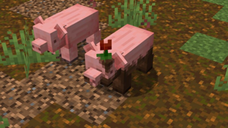 There's a 150 chance for a muddy pig to spawn naturally