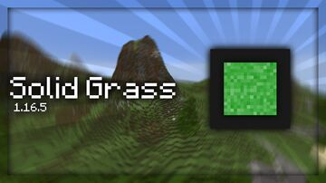 Solid Grass 1.16.5 Minecraft Texture Pack