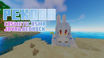 Pekora COSMETIC ASMR Java Edition Minecraft Texture Pack