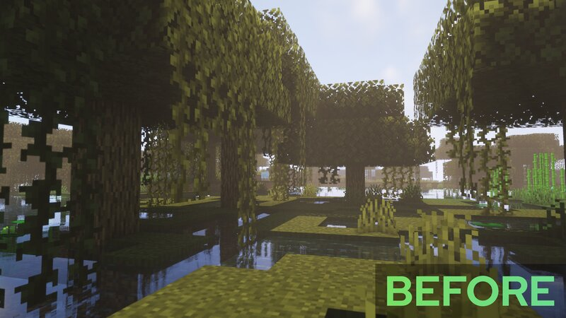Swamp - Before