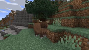Cow Biome Variations 1.16 - by mael.png Minecraft Texture Pack