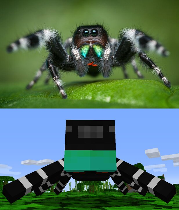 It is not poisonous and uses jumping for hunting