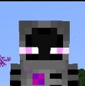They come from the End Minecraft Texture Pack
