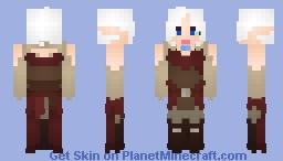 Traveler's Last Adventure Minecraft Skin