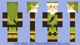 Link ~ Elder Warrior Minecraft Skin
