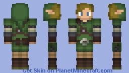 Link (LoZ SkyWard Sword) 3D! Minecraft Skin