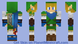A Hyrule Warriors: Link Skin
