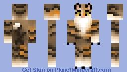 Shadedrain Minecraft Skin