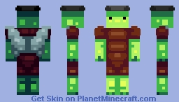 My Profile Picture Turtle Minecraft