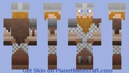 Ragnarr Loðbrók | Universal Skin in Description Minecraft Skin