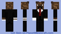 For magiccrafter12 Minecraft Skin