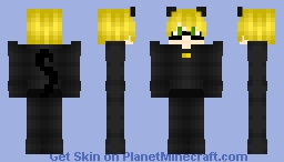 Cat Noir -Miraculous- _!Non!_ Minecraft Skin