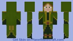 Igovaryn: Mage Druid Minecraft Skin